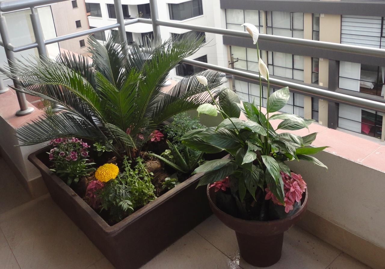 Lude elements flores huertos jardiner a y m s dise o for Diseno de plantas ornamentales