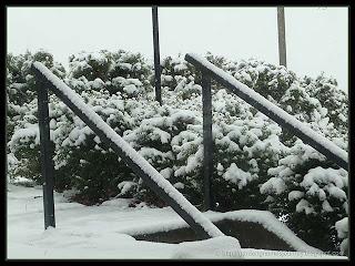 morning snow in April