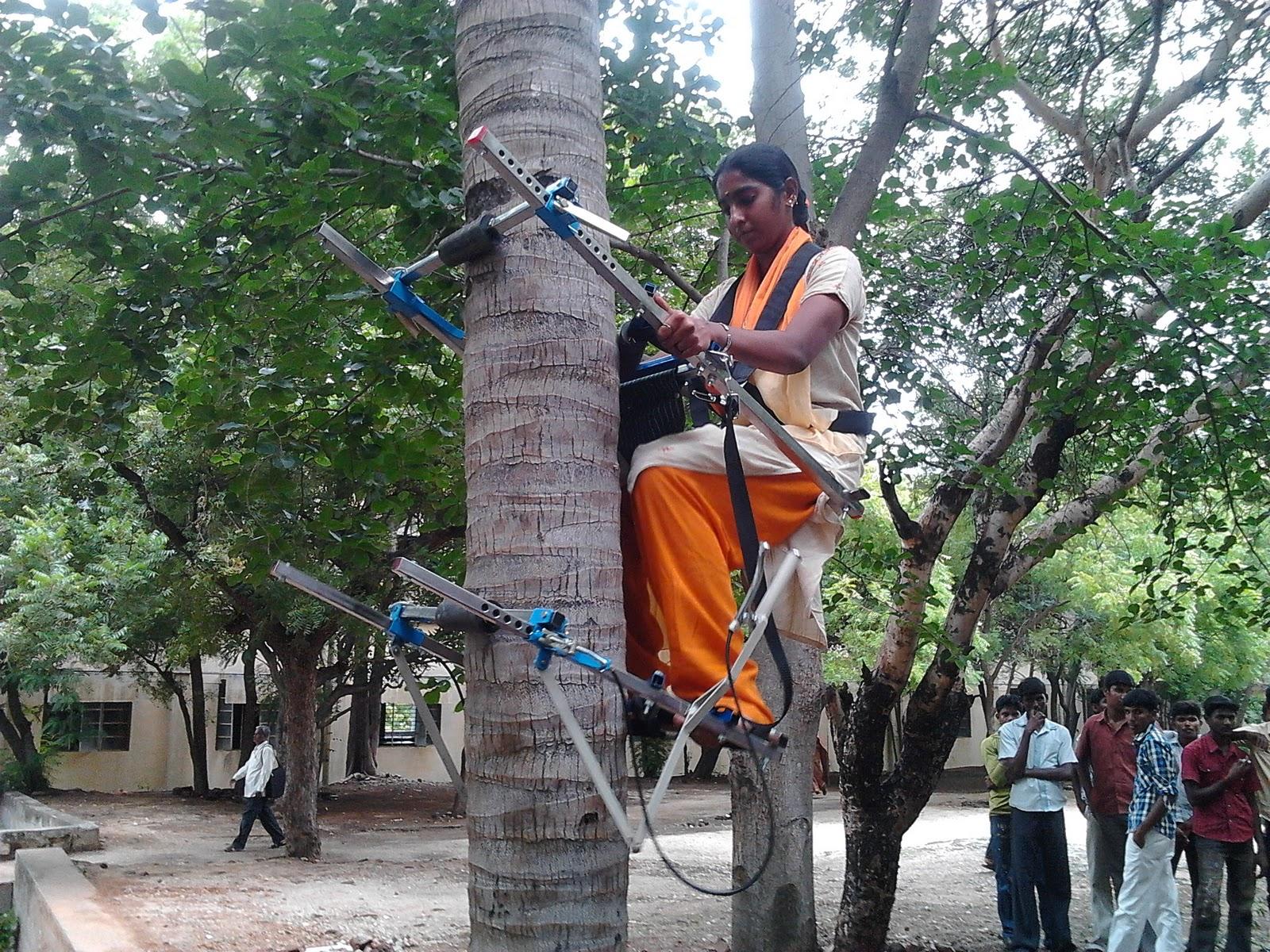 coconut climbing machine