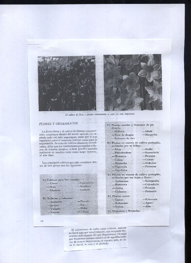 Formaci n en jardiner a tipos de cultivos clasificacion for Formacion jardineria