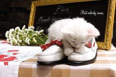 Manila Fashion Observer Mfo Shoe Series Kat Dy New York