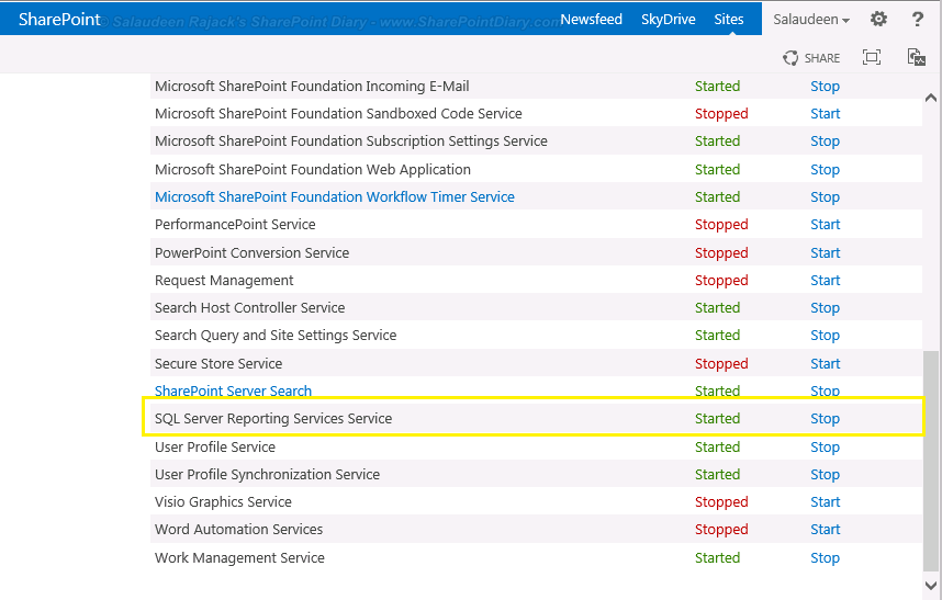 SSRS 2013 Service in SharePoint Services on Server