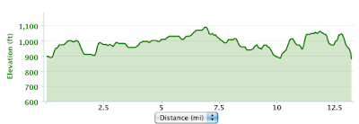 ZOOMA elevation according to my Garmin