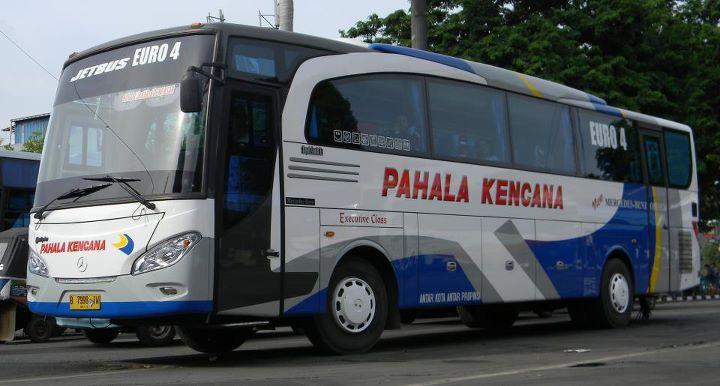 PO Pahala Kencana - New Travego/Jetbus by Adi Putro | Mercedes-Benz Bus