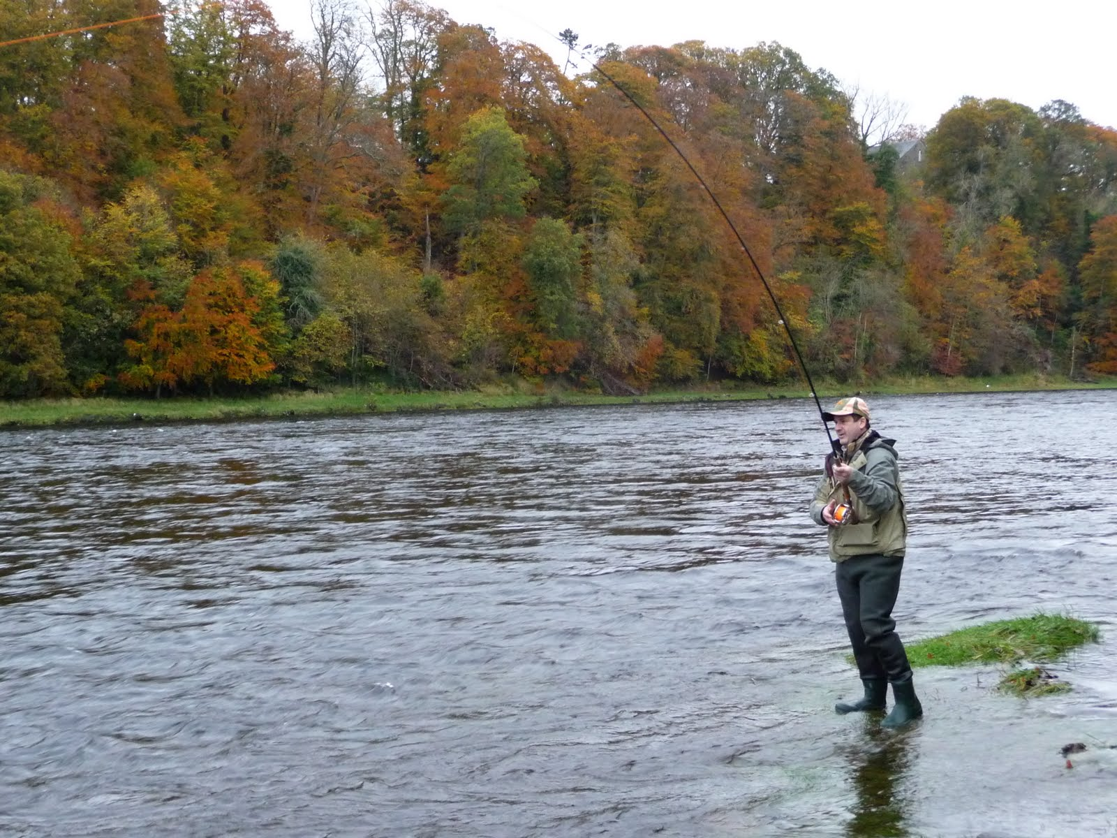 salmon fishing scotland.: salmon fishing scotland salmon fly, Fly Fishing Bait