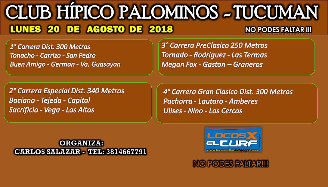 20-08-HIP. PALOMINO-PROGRAMA