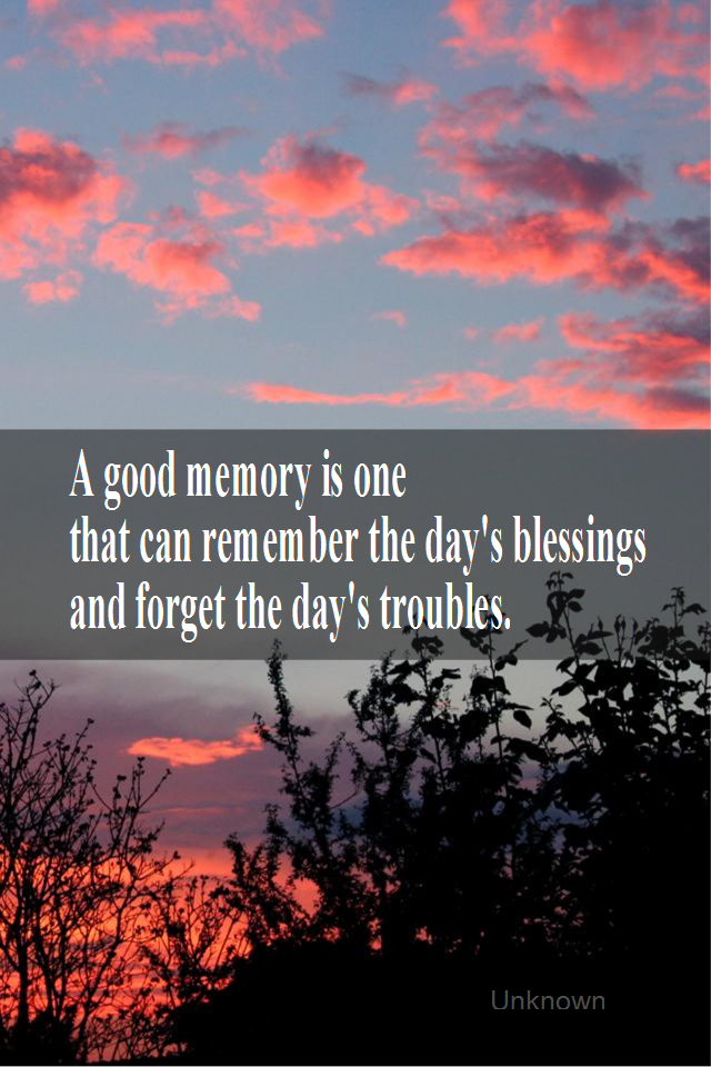 visual quote - image quotation for GRATITUDE - A good memory is one that can remember the day's blessings and fnorget the day's troubles. - Unknown