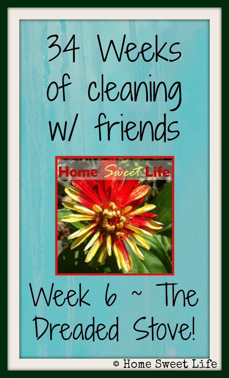 34 weeks of cleaning with friends, cleaning your oven