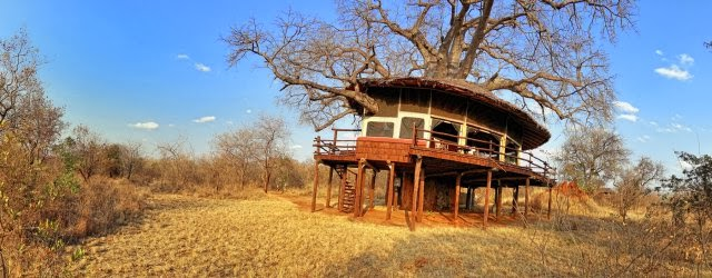 Elewana Collection Tarangire tree tops