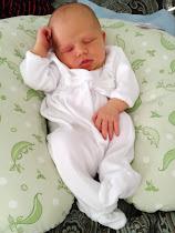Madeline Elizabeth Jex {Newborn}