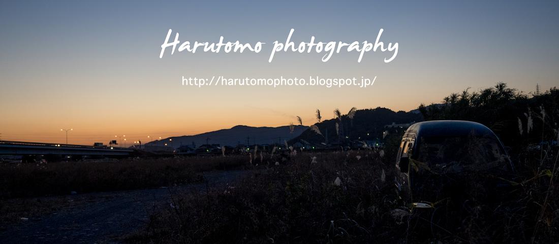 Harutomo photography