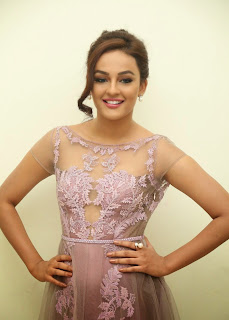 Actress Seerat Kapoor Pictures in Long Dress at Tiger Audio Launch 10.JPG