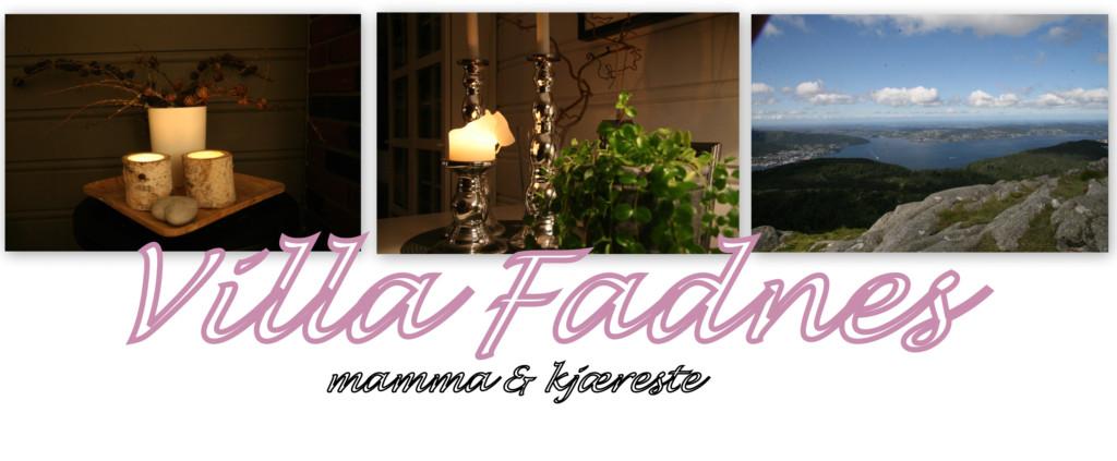 Villa Fadnes