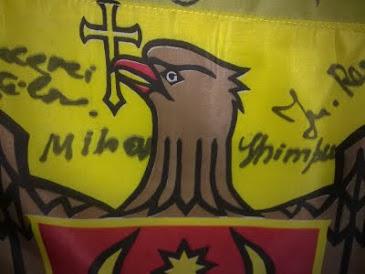 Drapelul RM semnat de M. Ghimpu