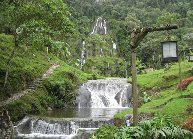 Coffee Tours Pereira Colombia