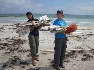 Image of interns with signs warning beach-goers of piping plover bird nests.