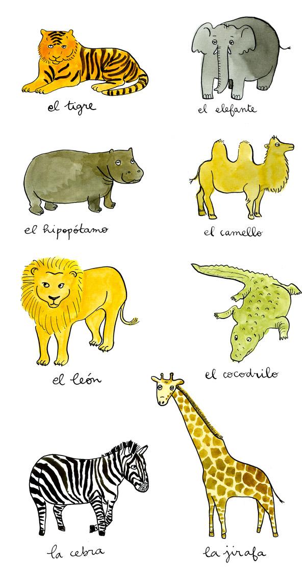 Palabras ilustradas: Animales salvajes (2)
