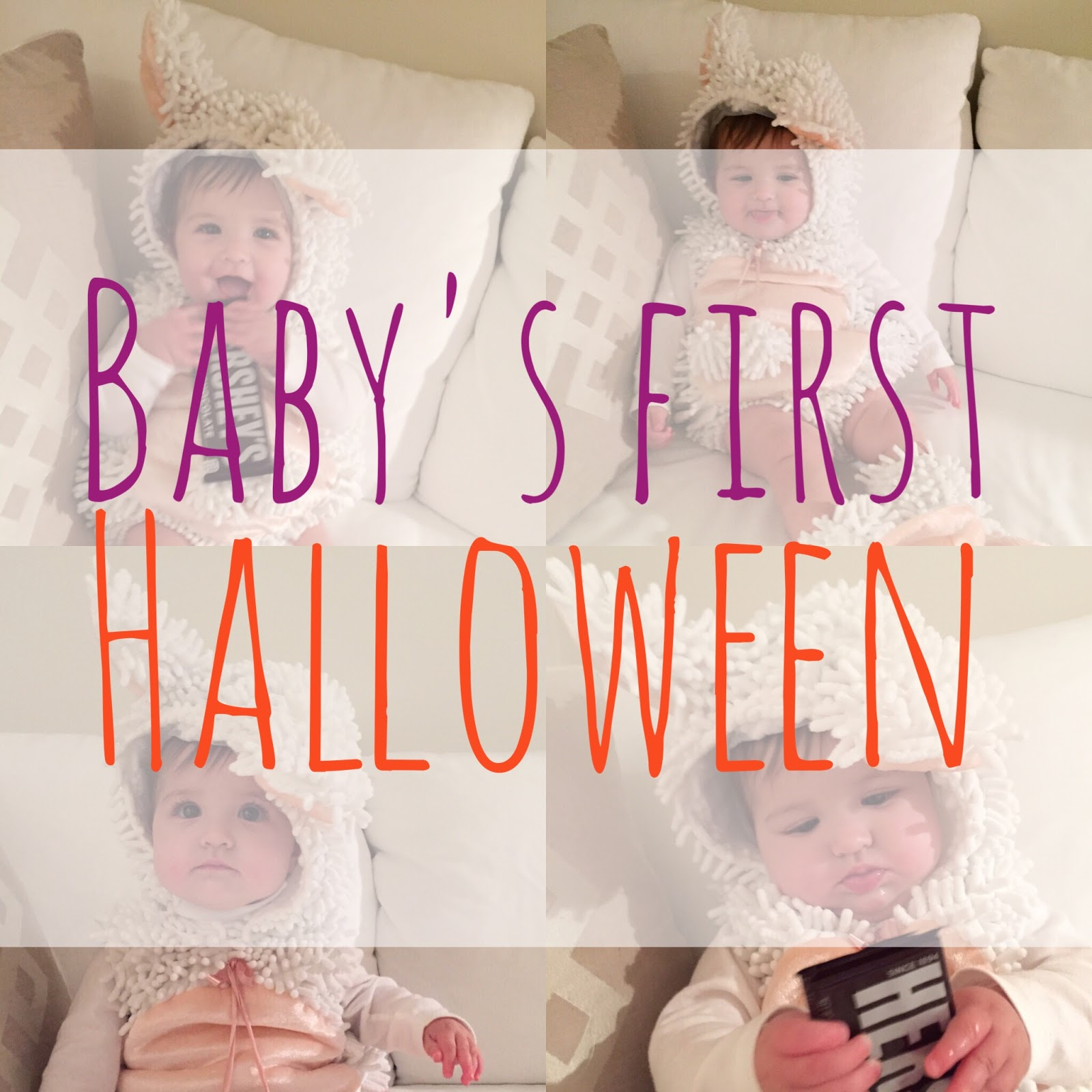 baby's first halloween - attention to darling