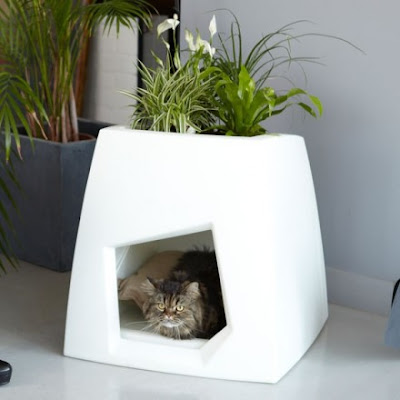 Creative Cat Houses and Cool Cat Bed Designs (21) 3