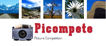 http://picompete.com/contest/results/1311/lubuntu-14-04-community-wallpaper-contest/