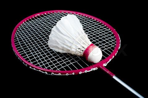 Badminton racket and birdie