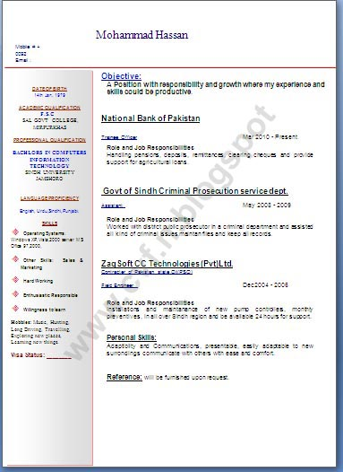 new resume format 2013 for freshers dadaji us