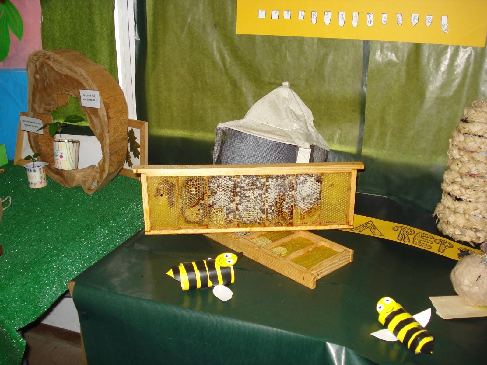 Proxecto abellas