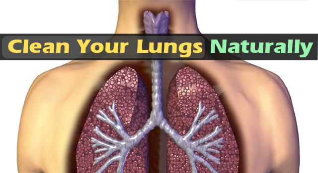 Clean Your Lungs From Nicotine Naturally