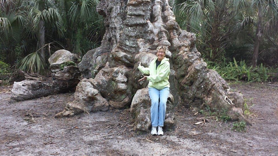 Highland's Hammock State Park, Sebring FL