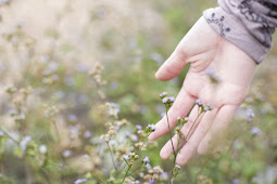 Meditación Día 13:La abundancia y la ley de la intención y el deseo