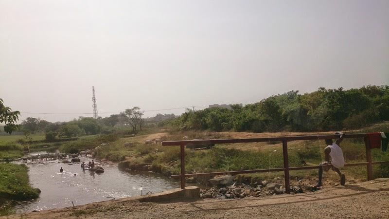 река, жизнь в африке