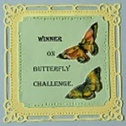 WINNER at BUTTERFLY SPOT.