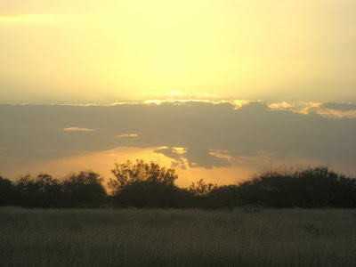 south TX sunset