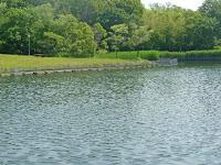 大蛇ヶ池」と名付けられた池は、大原野上里地域の田を潤すため1919(大正8)年に完成した用水池。