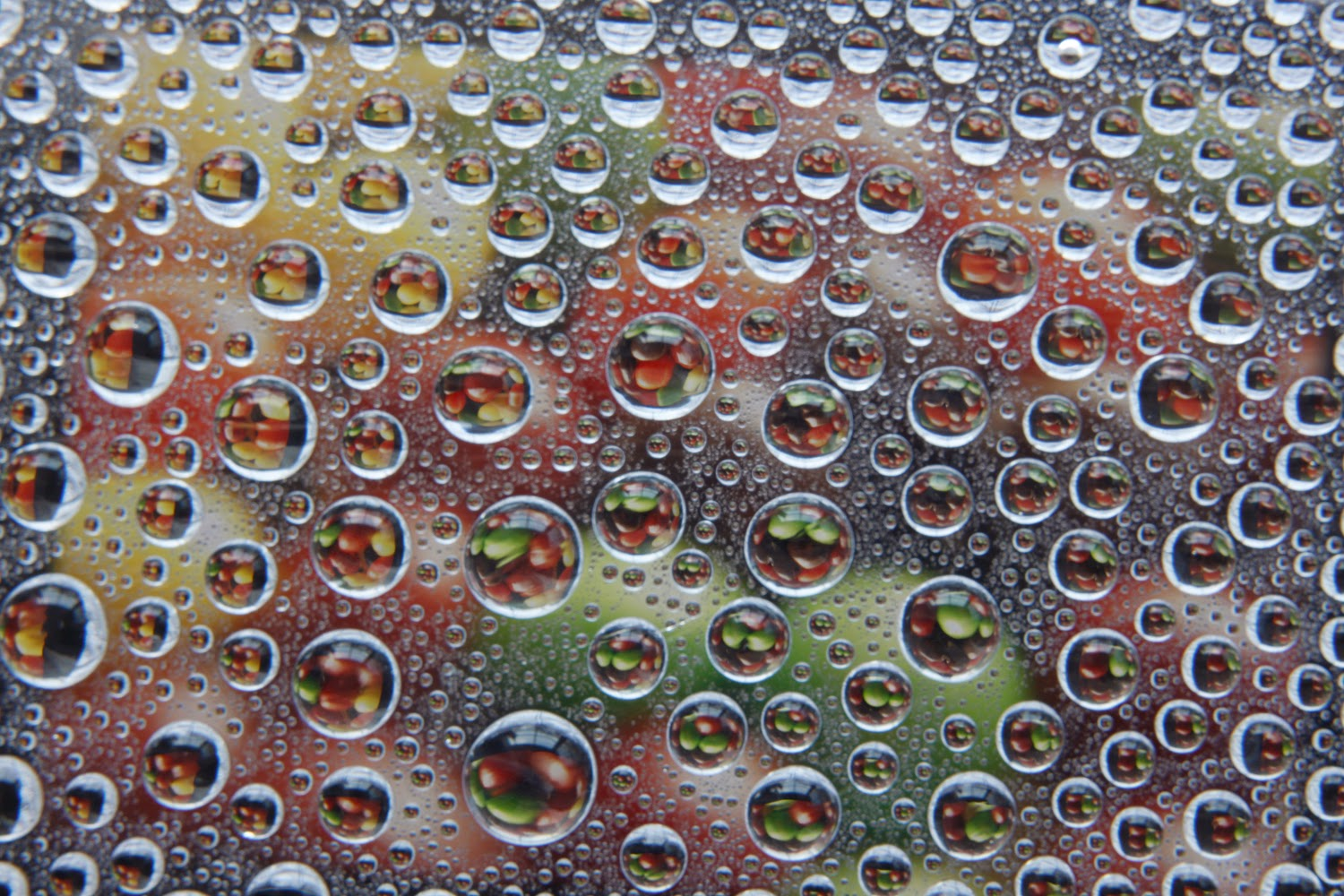 Droplet Refraction of Tablet Image | Boost Your Photography
