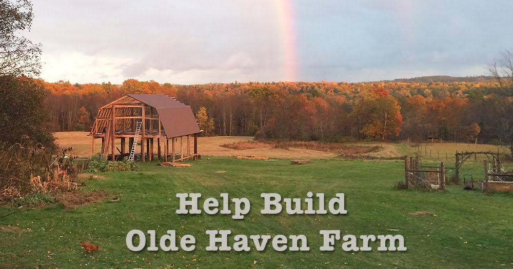 Help Build Olde Haven Farm