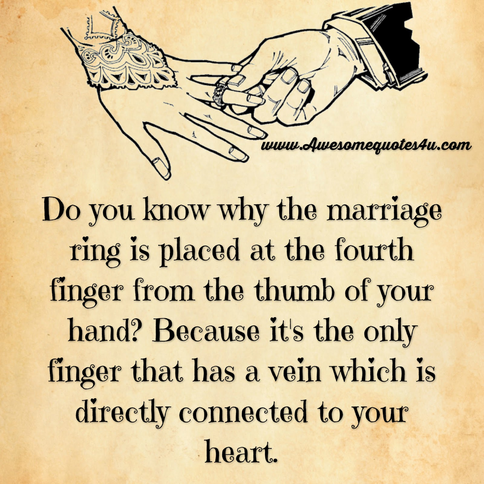 Short I Love You Quotes For Your Husband : Do you know why the marriage ring is placed at the fourth finger from ...