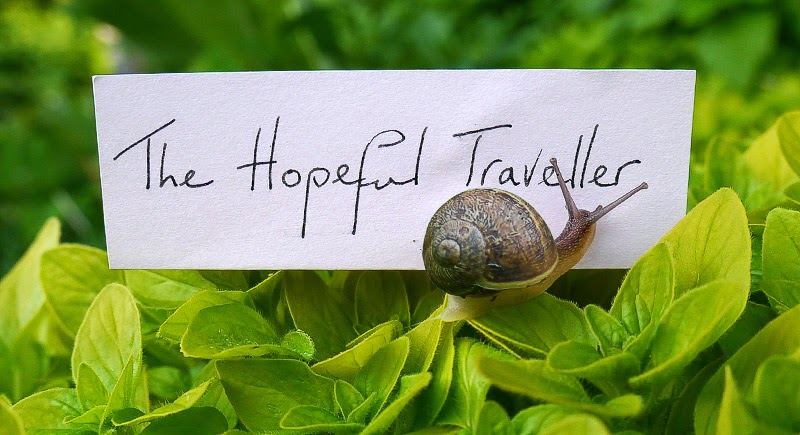 The Hopeful Traveller