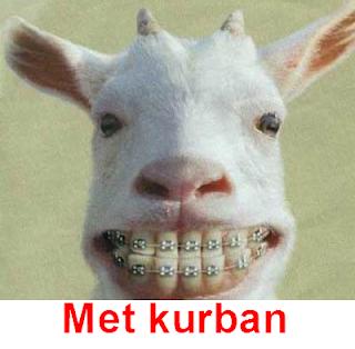 gambar Ucapan Idul Adha 2012 lucu, gokil, aneh,