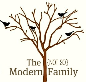the Not so Modern family