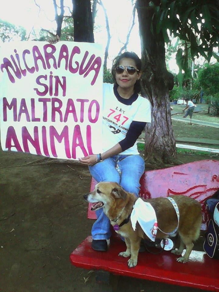 Nicaragua sin maltrato animal