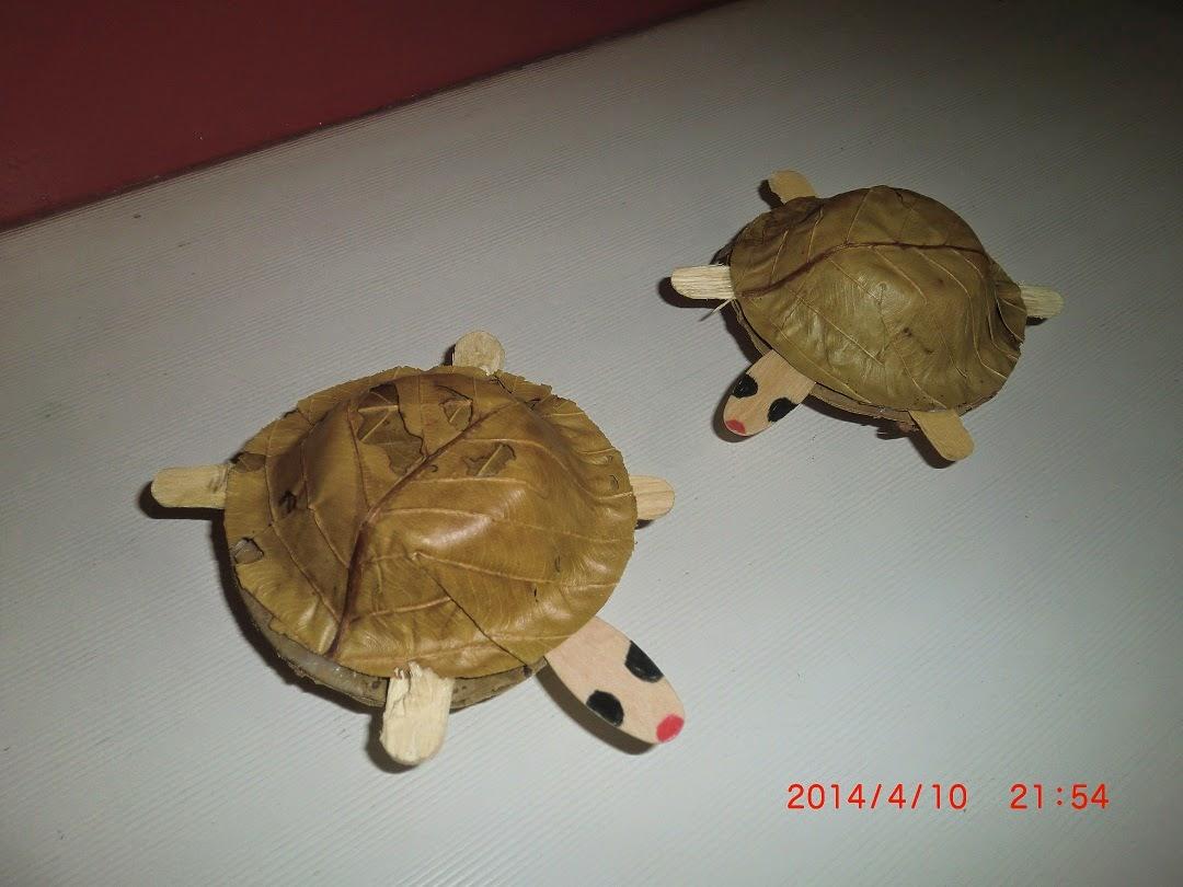 Craft Tortoises made from Sal-leaf bowls