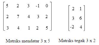 Materi Pengertian dan Jenis-jenis Matriks Matematika Lengkap