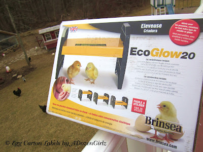 Brinsea EcoGlow 20 Brooder is a safe alternative to dangerous heat lamps
