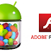 Adobe Flash Player Installation for Android Jelly Bean Devices - Tutorial & Guide