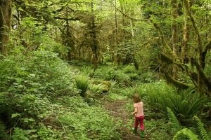 Vacations that connect kids with nature