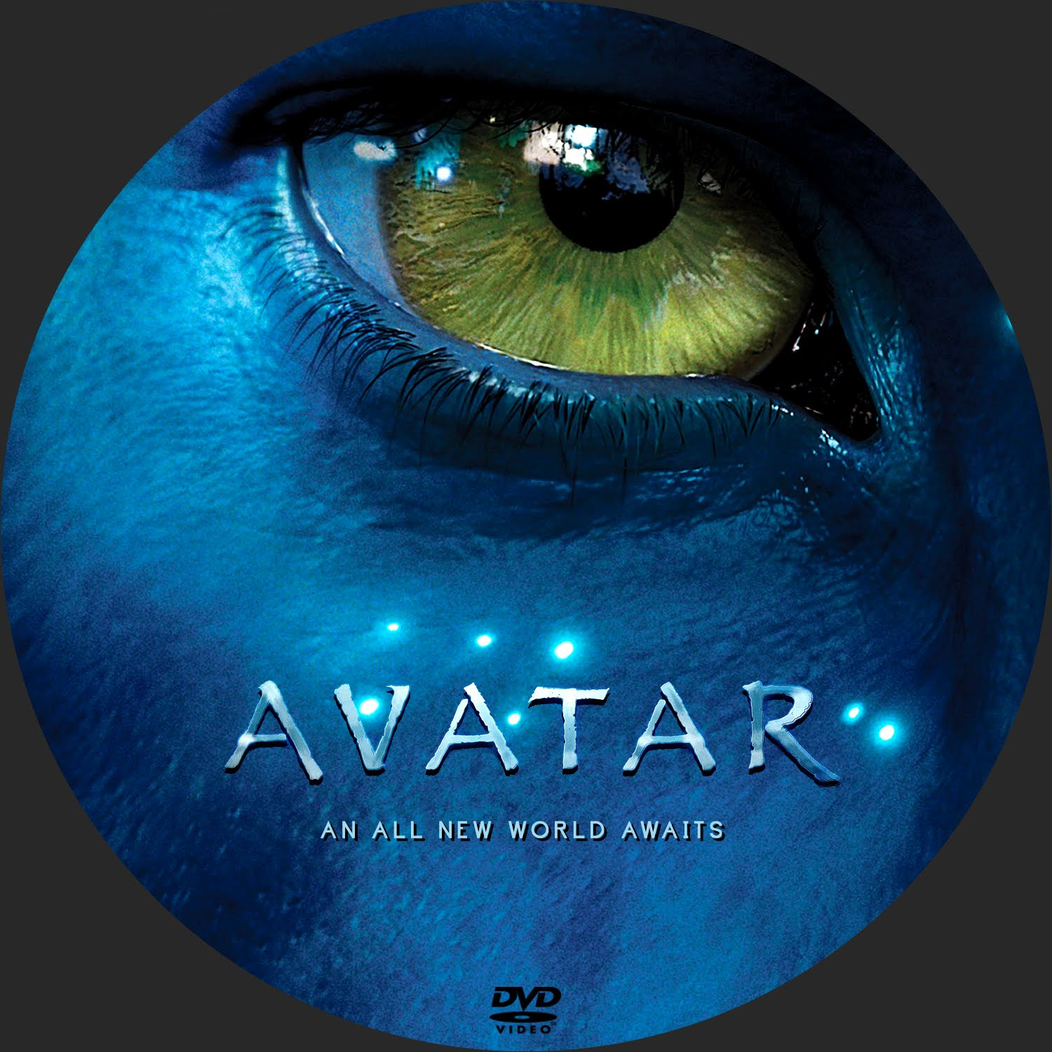 Avatar Dvd: DVD COVERS AND LABELS: Avatar