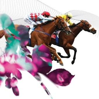 melbourne cup 2017 sweep pdf