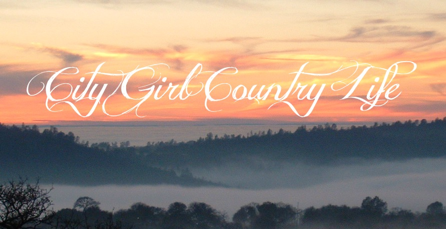 City Girl Country Life