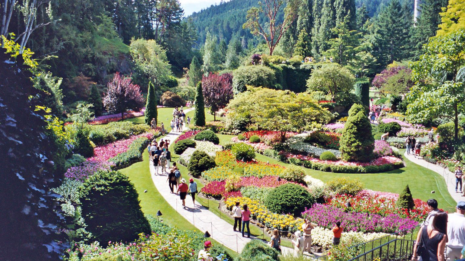 lockwood lavender farm butchart gardens in vancouver island canada